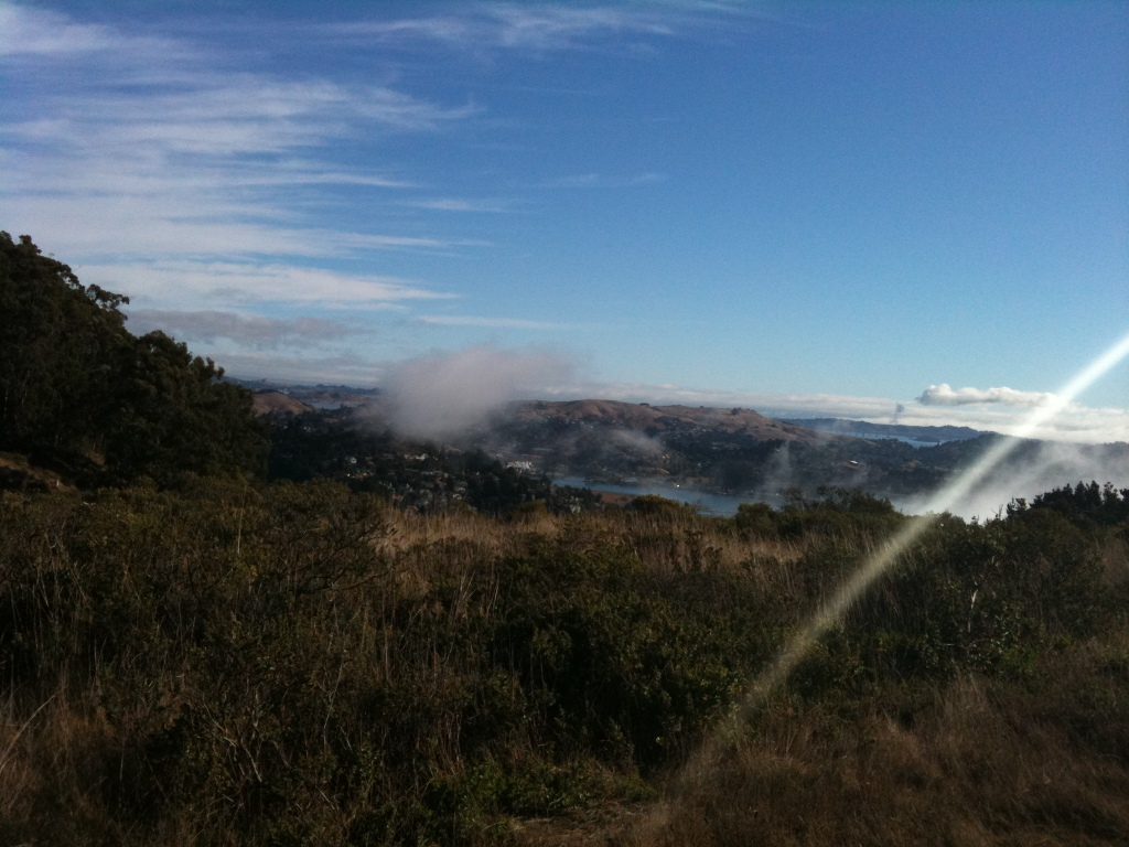 The view from the Miwok trail